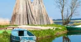 Fischland Darß Zingst